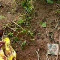 Photo: Couple chops off their newborn baby's private parts & dumps it in a pit toilet